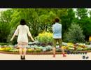 【はるいちご×たまひよ。】サディスティック・ラブ【踊ってみた】 thumbnail