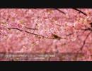 第79回 NHK 全国学校音楽コンクール ~中学校の部~ 課題曲