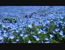 【ニコニコ動画】ローカル私鉄に乗って出かけてみた【第2回・ひたちなか海浜鉄道】を解析してみた