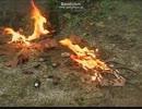 ホーペイ村焼き討ち事件