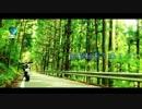 【CM】車載動画を撮ろう!~750cc&125cc編