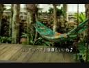 """【ニコニコ動画】波照間島""""KuKuruCafe""""を解析してみた"""