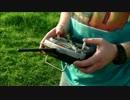【ニコニコ動画】こち亀のBGMを猫の死体をラジコンにしてる所に流して見たを解析してみた