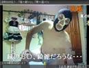 【ニコニコ動画】【暗黒放送】 横山緑のケツドラム (横山つよしソックリ・金バエそっくり)を解析してみた