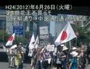 H24.6.26第4期花王デモ・銀座柳通り⇒中央通り通過時動画