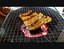 【ニコニコ動画】淡々と七輪でアナゴの蒲焼きを焼く動画を解析してみた