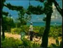 【ニコニコ動画】美しい日本のCM「SUNTORY~和茶~」(春・夏ver.)を解析してみた