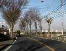 【ニコニコ動画】国道134号線(1/3)を解析してみた