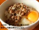 【ニコニコ動画】【ぬるく】食費1ヶ月5千円生活1週目【たまに猫】を解析してみた
