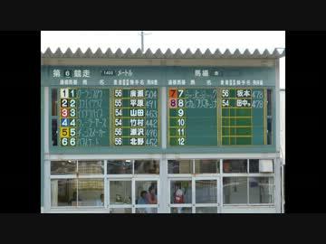 競馬 姫路 閉鎖していた姫路競馬場がレース再開決定!姫路競馬の特徴&予想のコツ紹介