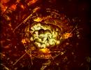 【ニコニコ動画】宇宙 ~未知への大紀行~「第08集 宇宙に終わりはあるのか」(01 of 02)を解析してみた