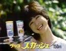 【ニコニコ動画】【懐かCM】1983年の夏休みを解析してみた
