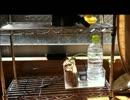 【ニコニコ動画】◆作ってみた、植物工場を解析してみた