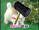 【ハンマー0e】愛犬ロボ「鉄槌」