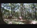 サバイバルゲーム 枯れた声で実況プレイ〜静かなる森林戦〜