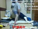 【ニコニコ動画】【金バエ】完全にFC2【らん】を解析してみた