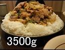 【ニコニコ動画】【メガ盛り】メガホイコーロー丼 一杯3.5kg【作って食べる】を解析してみた