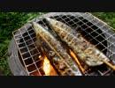 淡々と七輪で秋刀魚を焼く動画