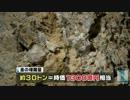 時価1300億円相当の金鉱床発見 thumbnail