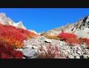 【ニコニコ動画】紅葉、奥穂高岳 2/3を解析してみた