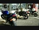 【ニコニコ動画】【ポン】ゆっくりバイクで旅がしたい その8を解析してみた