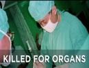 【新唐人】「臓器のための殺人」- 暗闇の中国臓器移植ビジネス