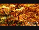【ニコニコ動画】【Part.10】隼と一緒にお出かけしようよ!?【秋を堪能!編】を解析してみた