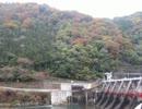 【ニコニコ動画】川原で紅葉見てきたよ!を解析してみた