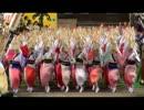 the keel(Nu-Style Gabba mix)で阿波踊り thumbnail