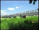 【夏の山親方】渡良瀬橋【歌ってみた】