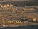 【ニコニコ動画】【BGM素材】Wilderness【オリジナル曲】を解析してみた