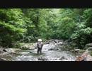 【ニコニコ動画】【渓流釣り2012】~追憶のヒットシーン10連発!~を解析してみた