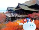【ニコニコ動画】京都を駆け抜けろ!!( ^・ω・^ )を解析してみた