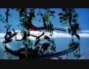 【ニコニコ動画】HakobuNe / sky in the bird cages feat. 武富士アコム,文鳥,AO,野崎りこん,リヒトを解析してみた