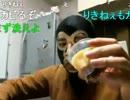【ニコニコ動画】暗黒実験室 炊飯器にプリンを入れて蒸炊くとどうなるか?放送 1/5を解析してみた