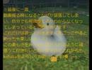 【MHF】鬼ごっこのルールまとめ(改正版)