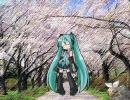 【初音ミク】 春~spring~ (Hysteric Blue)修正版