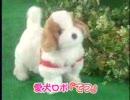 第83位:日本直販 愛犬ロボ「てつ」