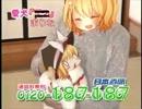 日本直販 愛犬ロボ「UDK」.mp4