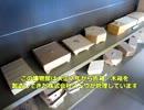 【スポット】折箱博物館 木具輪(きぐりん)