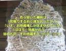 """【珍スポット】林泉寺の縛られ地蔵の""""縛り方"""""""