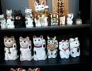 【珍寺】家出した猫を探してくれる猫探しの三光稲荷神社