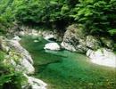 美しい水の画像 mp4