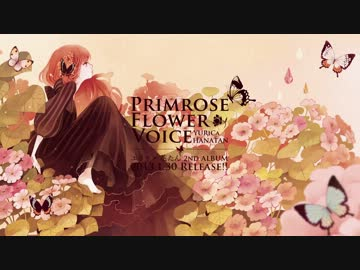 """Evening Primrose"" (acoustic fingerstyle guitar) - YouTube"