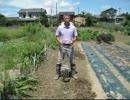 家庭菜園 アルキメデス アルミ