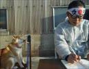 【ニコニコ動画】浪人させないようにする柴犬を解析してみた