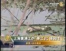 【新唐人】上海黄浦江が「豚江」に 原因は