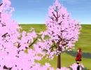 【ニコニコ動画】【MMD】物理演算つき桜モデルを自動生成してみたを解析してみた