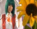 【TMA】Bad Apple!! PV【コスプレ例大祭】