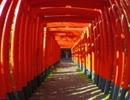 【ニコニコ動画】もやしもんの人が写真ぶらり旅「三重県桑名市2 九華公園」編を解析してみた